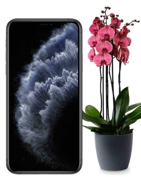 Bild von Apple iPhone 11 Pro 64GB Refurbished